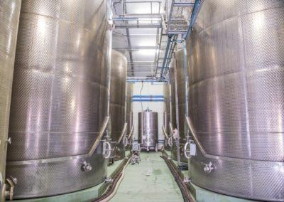 Montagu Winery-64 (Large)
